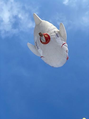 159-expedicni-lety-v-alpach